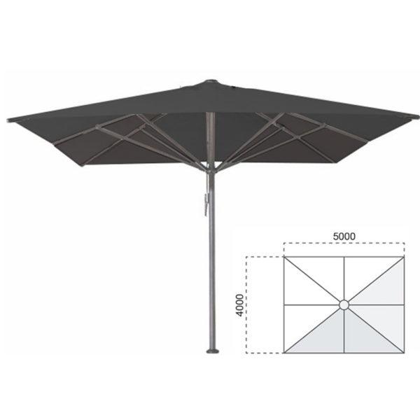 bella zwart 4x5